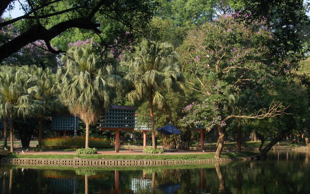 The botanical gardens: How pretty is your city?