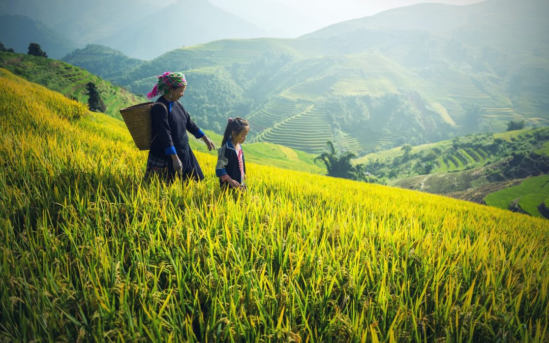 Top places to see in Central Vietnam!